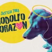 #JusticiaParaRodolfo: Hombre mata a perrito a machetazos en los Mochis