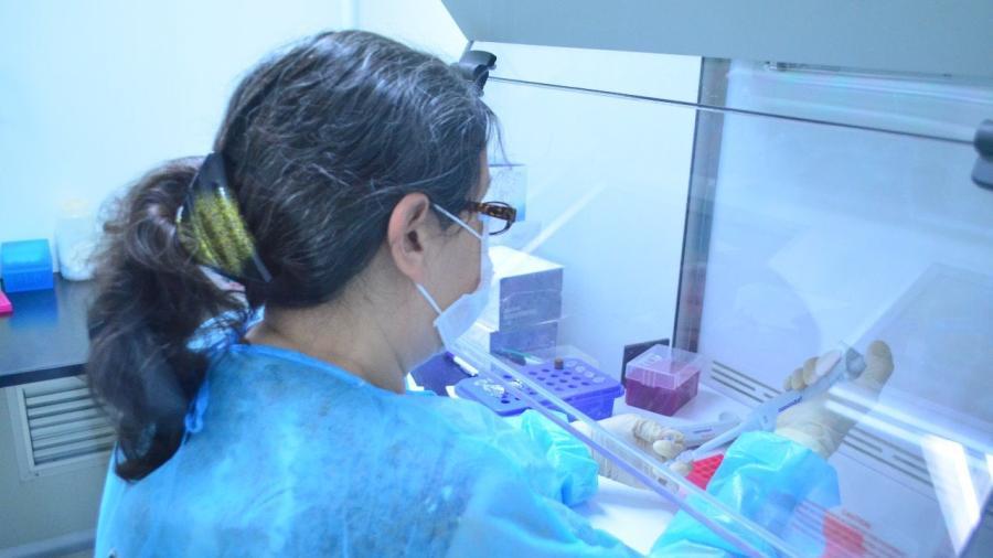 Confirman pruebas de laboratorio 74 nuevos contagios de #COVID19 en Tamaulipas